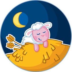 Haba éjszakai fény az aljzatba - alvó bárány